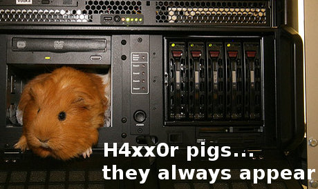 h4xx0r pigs, they always appear