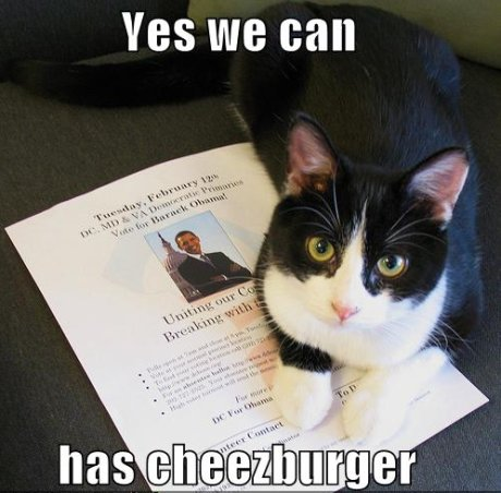 cat on Obama poster, caption 'yes we can has cheezburger'