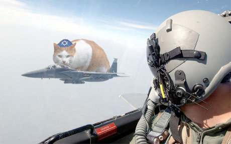huge cat wearing yarmulke sitting on fighter jet