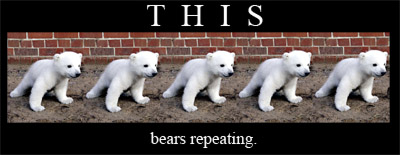 bears repeating [multiple pictures of a bear]