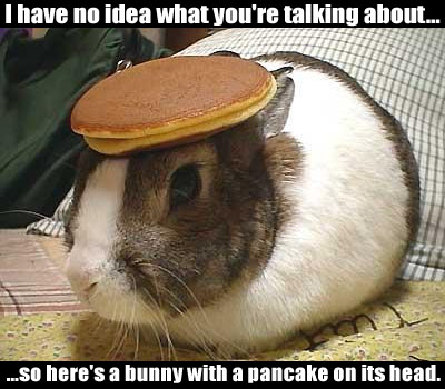 I have no idea what you're talking about, so here's a bunny with a pancake on its head