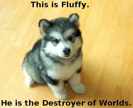 puppy, caption 'This is Fluffy.  He is the Destroyer of Worlds.'