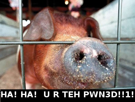 swine, saying 'Ha! Ha! U r all teh pwn3d!'