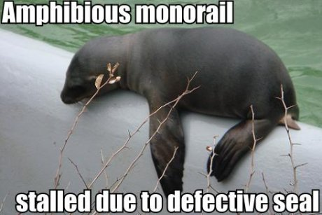 seal sitting on pipe, caption 'Amphibious monorail stalled due to defective seal'
