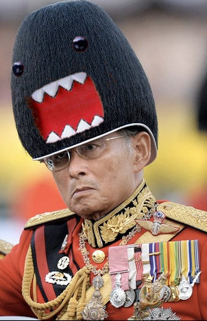 the king of Thailand wearing a hat that looks like Domo-kun