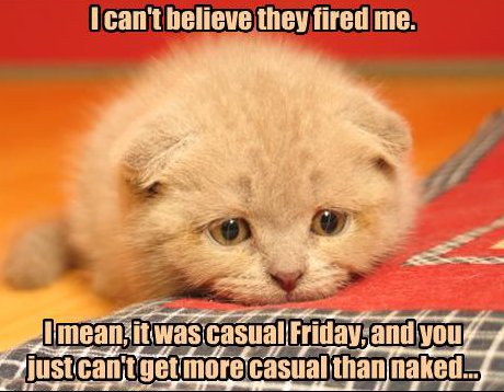 cat saying 'i can't believe they fired me; it was casual day, and you can't get more casual than naked'