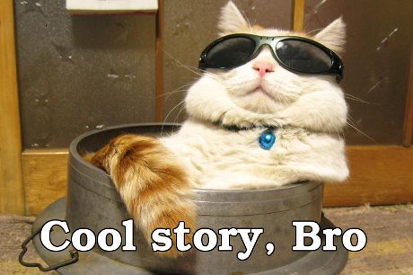 cat with sunglasses saying 'Cool story, Bro'