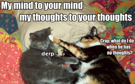 my mind to your mind, my thoughts to your thoughts... crap, what do I do when he has no thoughts?
