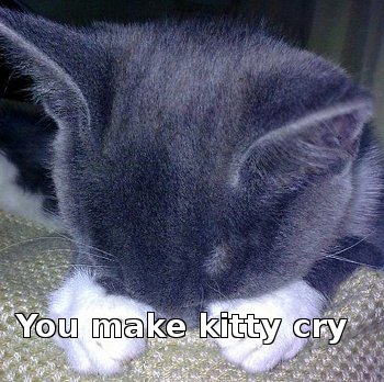 cat with paws over face saying 'You make kitty cry'