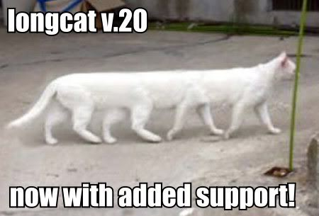 longcat 2.0, now with added support