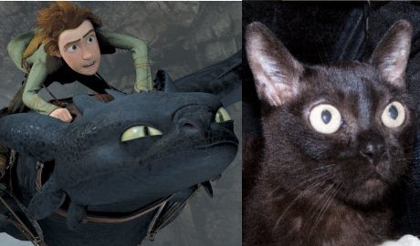 pic of Toothless side-by-side with pic of Moira