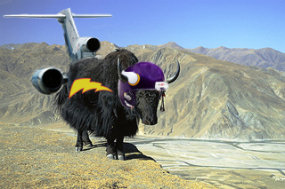 yak with football helmet and jet engines