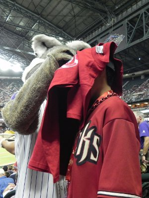 Baxter the Diamondbacks mascot signs a kid's shirt