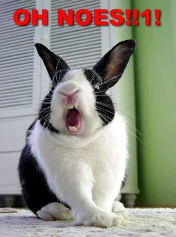 rabbit saying 'oh noes!'