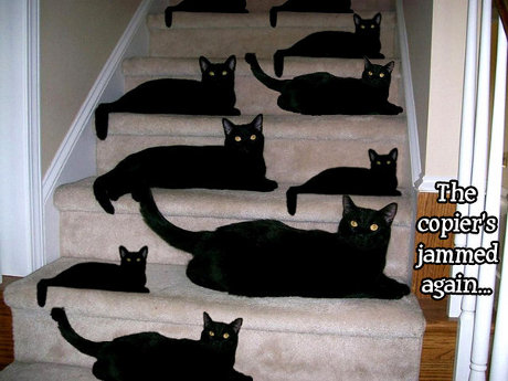 Black cat on a staircase, cat's been copied and pasted many times, caption 'The copier's jammed again'