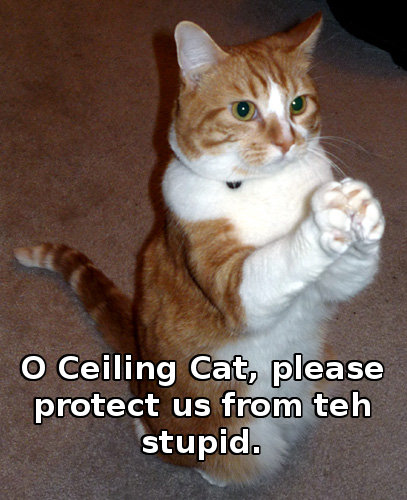 O Ceiling Cat, please protect us from teh stupid