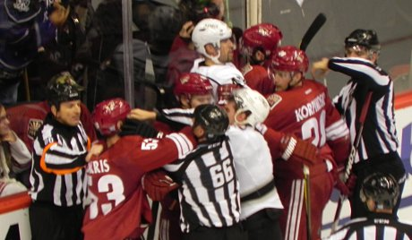 Coyotes and Kings players fighting during the hockey game