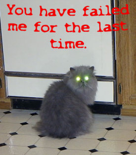 Cat, saying 'You have failed me for the last time'