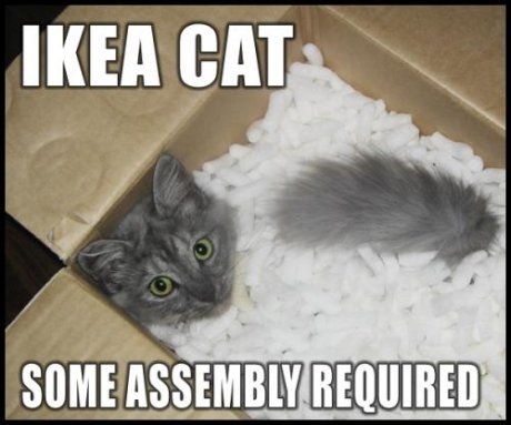 IKEA cat: some assembly required