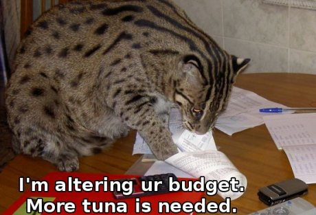 Malaysian fishing cat, with a receipt, caption 'Im altering ur budget'