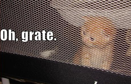 cat behind grate, caption 'Oh Grate'
